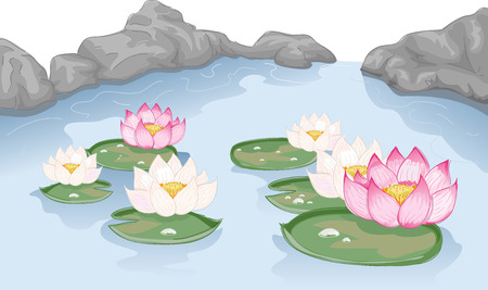 floating on water: Illustration Featuring Lotus Flowers Floating on Water