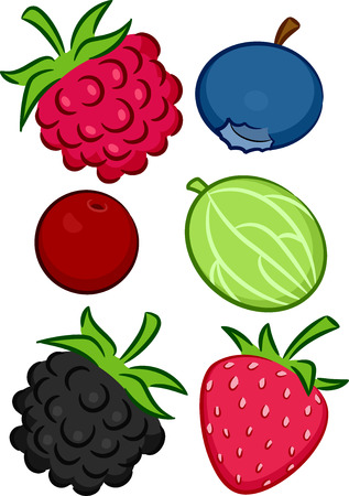 mouth watering: Illustration Featuring a Wide Variety of Colorful and Mouth Watering Berries
