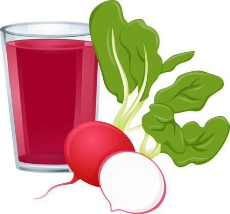 Illustration Featuring a Glass of Radish Juice with Fresh Radish on the Side Illustration