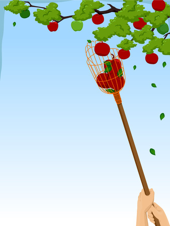 picker: Background Illustration of a Person Using  a Fruit Picker to Harvest Apples Illustration