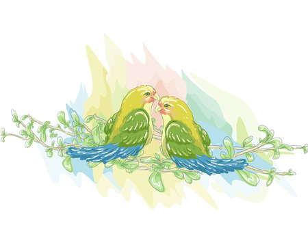 sketchy illustration: Sketchy Illustration of a Pair of Colorful Lovebirds