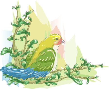 fade out: Sketchy Illustration of a Colorful Lovebird Perched on the Branch of a Tree Stock Photo