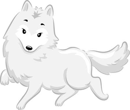 poise: Illustration of a Cute Arctic Fox Walking Gracefully