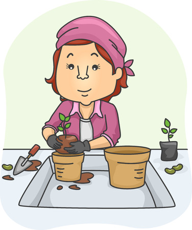plant pot: Illustration of a Woman Moving a Plant From a Small Pot to a Larger One