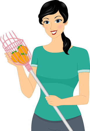 Illustration of a Woman Using a Fruit Picker to Gather Oranges illustration