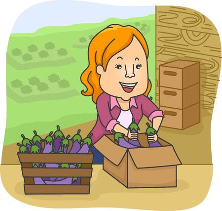 eggplants: Illustration of a Woman Arranging Eggplants in a Box