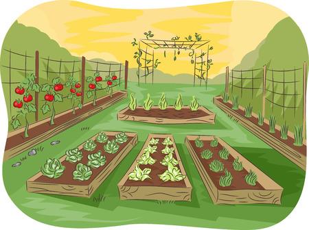 부엌 정원의 그림 과일 및 야채와 함께 줄 지어