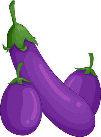 picked: Illustration of a Pair of Freshly Picked Eggplants Stock Photo
