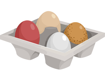 culinary arts: Illustration of a Tray Filled With the Eggs of Different Chicken Breeds