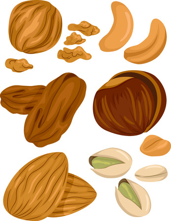 nuts: Illustration of Different Types of Nuts With a Few Cracked Open Stock Photo