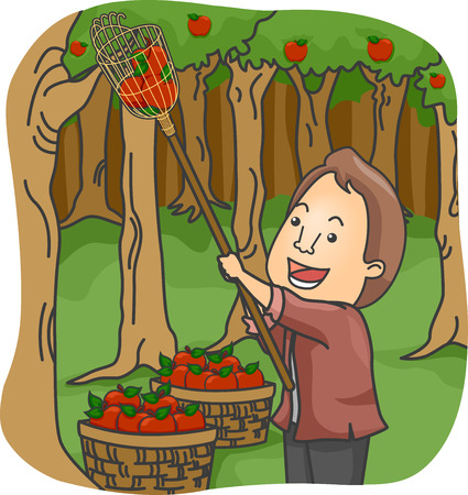 apple clipart: Illustration of a Man Picking Apples in an Orchard