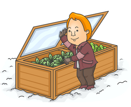 winter garden: Illustration of a Man Checking the Cold Frame of His Winter Garden