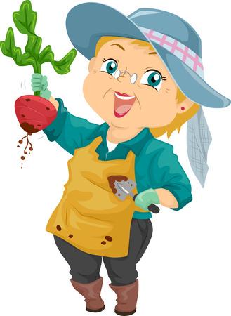 Illustration of a Proud Senior Citizen Showing the Beet She Harvested illustration