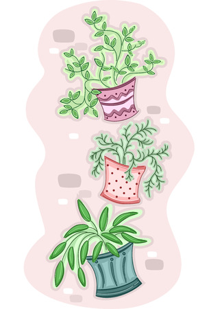 urban gardening: Illustration of a Group of Hanging Plants Hanging from a Wall Stock Photo