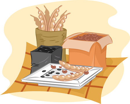 Illustration of Seeds Dried Out Before Being Packed and Served illustration