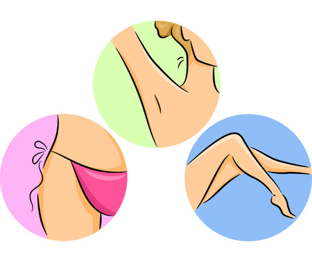 Illustration of Different Parts of the Body Commonly Shaved by Women Stock Photo
