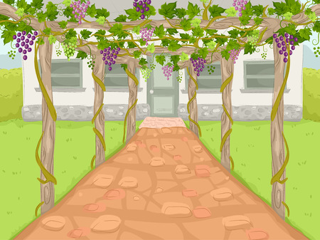 trellis: Illustration of a Wine Estate with a Path Covered by Grape Trellises Leading to the Main House
