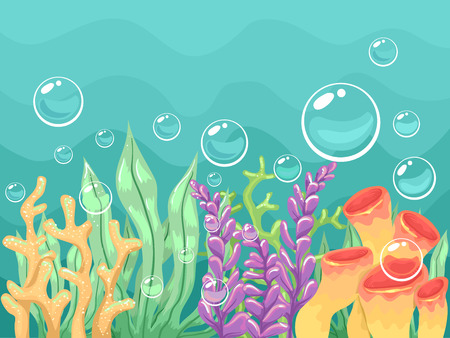 Colorful Illustration of Different Types of Corals and Seaweeds