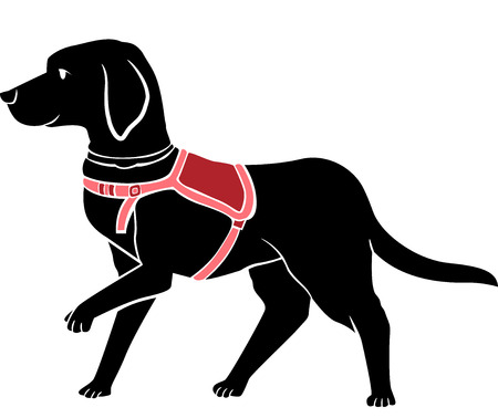 guide dog: Stencil Illustration of a Black Labrador Working as a Guide Dog