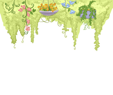 garden plant: Illustration of a Garden with Colorful Flowers Hanging from Above Stock Photo