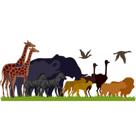 avian: Illustration of Safari Animals Migrate in Groups Stock Photo