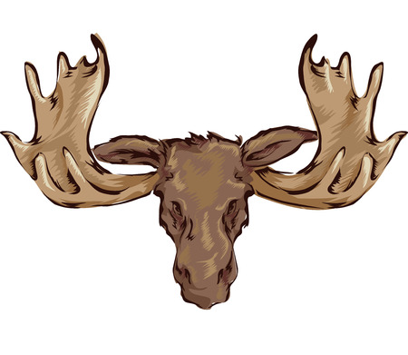Illustration of a Stuffed Moose Head Hanging Placed on the Wall