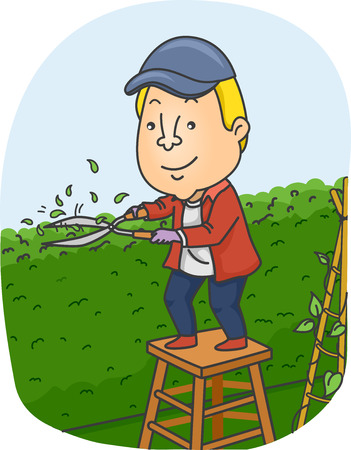 hedge: Illustration of a Man Trimming the Hedge on His Garden