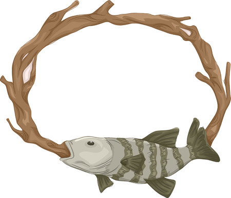 taxidermy: Frame Illustration of a Stuffed Fish Mounted on the Wall