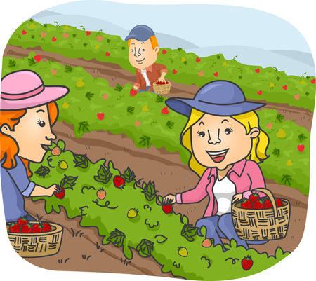 crops: Illustration of a Group of People Picking Strawberry at a Farm