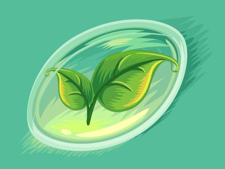 encapsulated: Illustration of Leaves Inside a Soft Gel Capsule Stock Photo