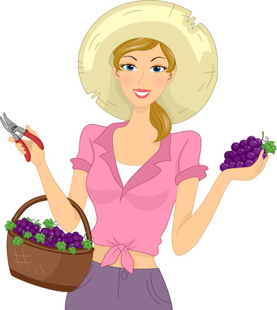 harvested: Illustration of a Girl Carrying a Basket of Freshly Harvested Grapes