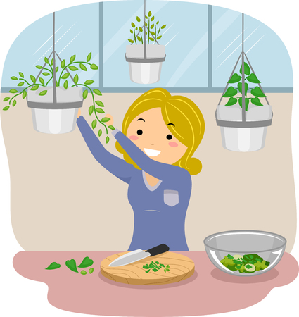 indoors: Illustration of a Stickman Girl Picking Indoor Herbs for Cooking Stock Photo
