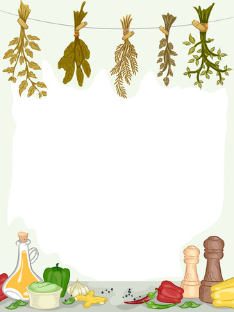 food preparation: Frame Illustration of Organic Spices and Condiments