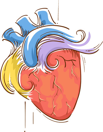 pulsing: Colorful Sketchy Illustration of a Heart Pulsating with Life