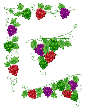 red grape: Illustration of Grape Vines Design Elements Stock Photo