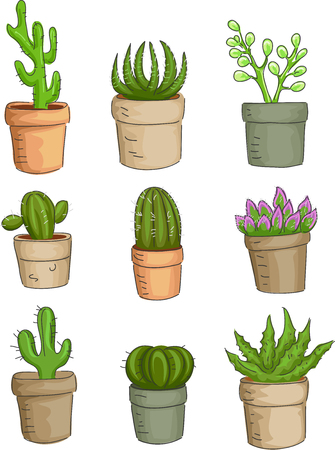 urban gardening: Illustration Featuring a Variety of Succulent Plants