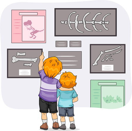 sibling: Illustration of Little Boys Looking at Dinosaur Skeletons in the Museum
