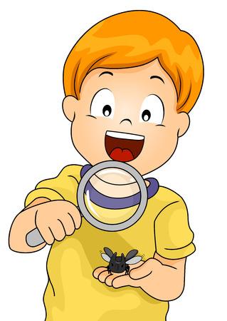 observing: Illustration of a Little Boy Observing a Rhinoceros Beetle