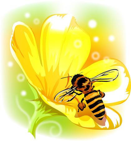 honeybee: Whimsical Animal Illustration of a Honeybee Sucking Nectar from a Yellow Flower