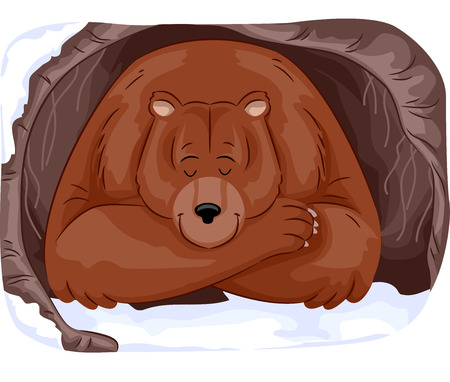 hideout: Animal Illustration of a Large Grizzly Bear Hibernating in a Cave During Winter