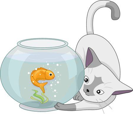 cat fish: Animal Illustration of a Curious Cat Playing with a Goldfish in a Fish Bowl