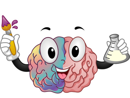 representing: Mascot Illustration of a Brain Representing the Right and Left Hemisphere Holding a Paintbrush in One hand and a  Florence Flask in the Other Stock Photo