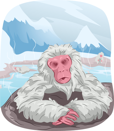 Animal Illustration Featuring a Japanese Macaque Enjoying a Hot Spring Bath