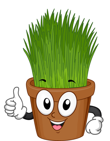 Indoor Plant Mascot Illustration of an Grass in a Pot Giving a Thumbs Up Stock Photo