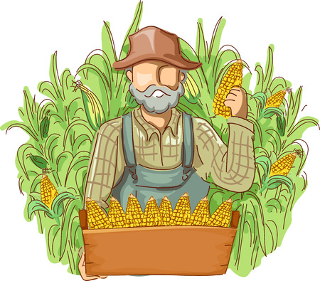 freshly: Illustration of a Farmer in Overalls and a Straw Hat Holding a Crate of Freshly Picked Corn