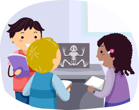 Stickman Illustration of a Group of Preschool Kids Taking Notes While Observing the Skeleton a Dissected Frog