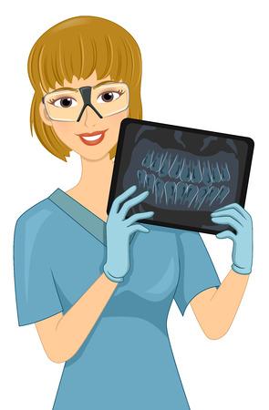 Illustrazione di un tecnico radiologico femminile che mostra il raggio di un set di denti Archivio Fotografico - 73343092