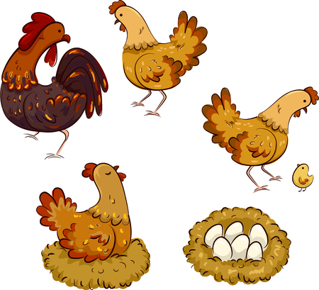 Colorful Cartoon Illustration Demonstrating the Life Cycle of a Chicken 写真素材