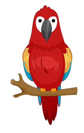 peacefully: Cute Animal Illustration of a Colorful Parrot Resting Peacefully While Perched on a Branch