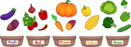Ilustración colorida con frutas y verduras clasificadas según el color